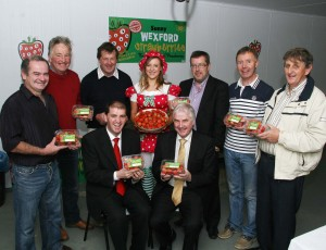 Sunny Wexford Strawberries launched at Kearns Fruit Farm
